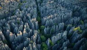 hutan batu, tiongkok