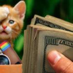 4 Cara Menghasilkan Uang lewat Instagram