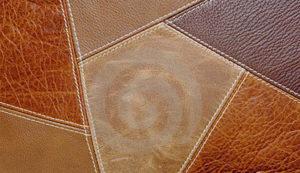 kulit perca