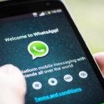 Ini 22 Tipe Anggota WhatsApp di Grup, Cek Yuk Anda Golongan Mana?